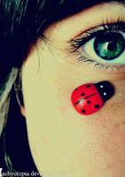 Ladybug by kachyutopia