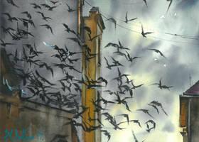 Birds by PawelGladkow