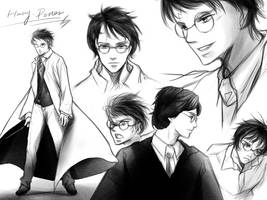 Harry James Potter by luosong