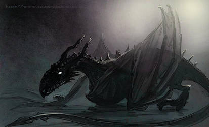 Little Dragon by thorbad