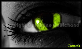 cat eye by lunastia