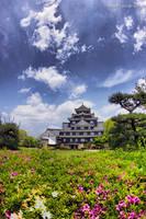 Okayama Castle by WindyLife