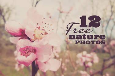 12 Free Nature Photos by hugoo13