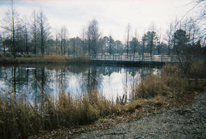 Pond Shot 01 by bp-stock