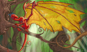 Dragon Wing by datoria