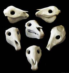 Horse Skull by undead-medic