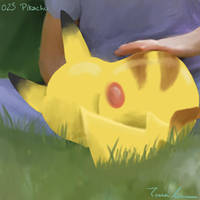 Pokemon Challenge 005-Pikachu by midgear