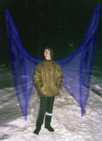 Special Kind of Wings by djpirtu