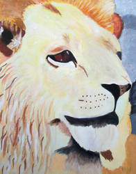 GSCE art - Lion by AngelBless