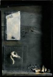 still life by lauren-rabbit