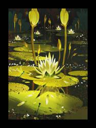 Little magic pond by MDanecka