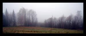 Fog by BiggDaddy