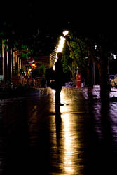 Manuka in the Rain by ohmeow