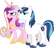 Angry Cadance and Shining (Normal Version) by 90Sigma