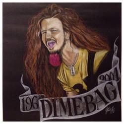 Dimebag by HeidiJS