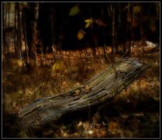 Rest by MrColon