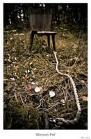 Shroom Pet by MrColon