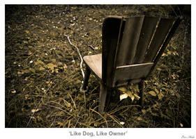 Like Dog, Like Owner by MrColon