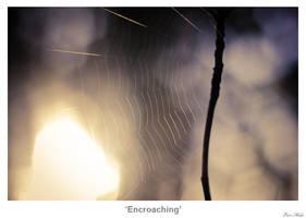 Encroaching by MrColon