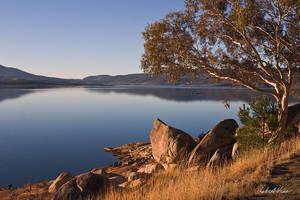 Still Lake by robertvine
