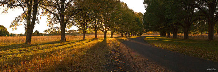 Gostwyck Road by robertvine