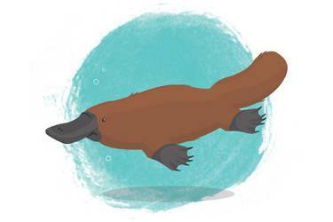 Petit platypus by mopixit