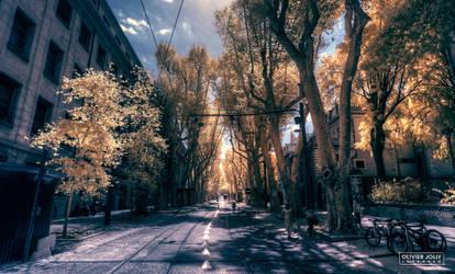 Tram Way by bamboomix