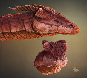 Dragon sketch by MadlegBadleg