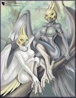 Perroquet Series:  Cockatiels by Ulario