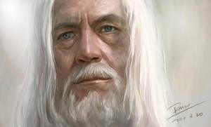 Gandalf by fmh1986