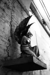 dark angel by bldlover666