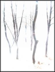 snowstorm by hugitsa