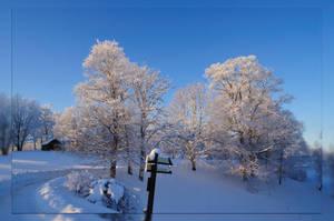 Frosty way by kuzjka