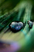 Heart of Glass by AutumnPhyre