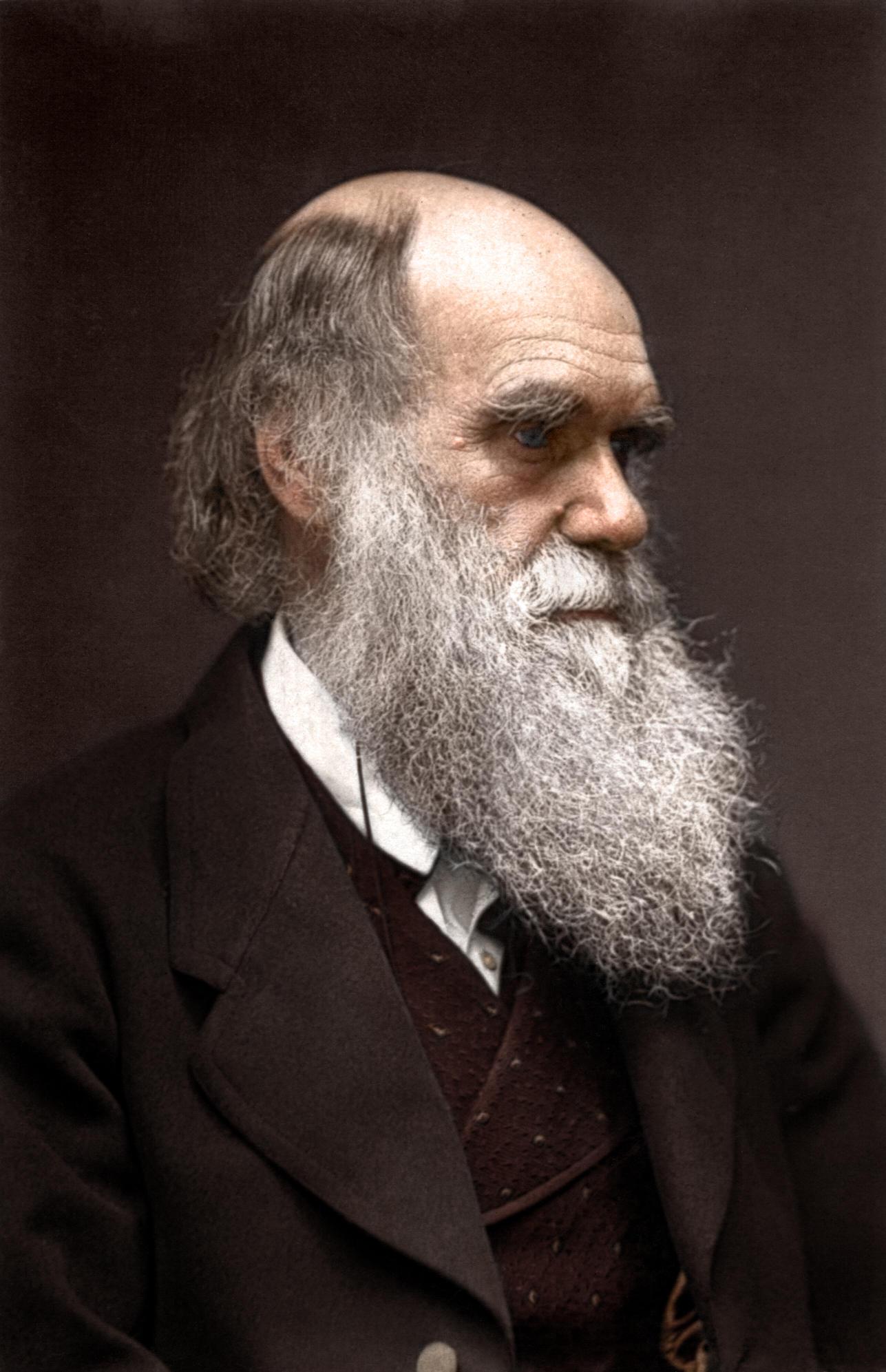 Charles Darwin by Zuzahin