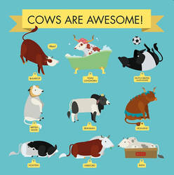Cows Are Awesome by AnNuttin
