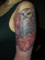 owl by eternaltaco