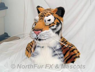 Tiger Head by sjgarg