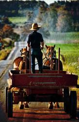 Textured Amish Wagon by braxtonds