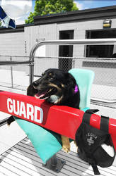 Keiko the lifeguard by iwuvrubberduckies