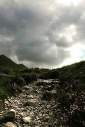 Stony Path by blackphoenix87