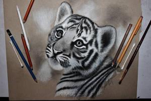 Tiger Cub by sjhowell11