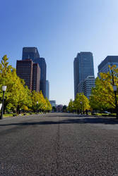 To Tokyo Station by frobocop
