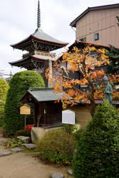 Hida Kokubun-ji Temple by frobocop