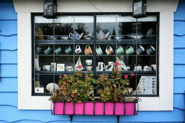 window shopping by frobocop