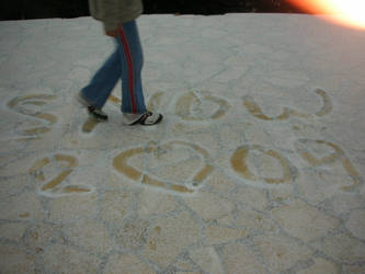 snow 2009 by chapaxfatalx