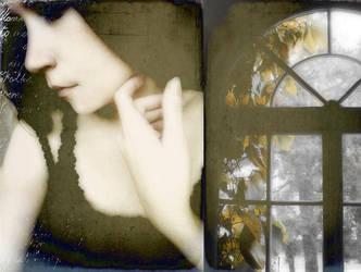 window flower by A-l-a-s-s-e-a