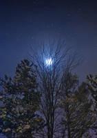 Winter Moon by monroeart