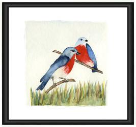 Blue Birds by scamper