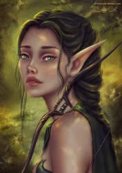 Elven Ranger by Alrooney